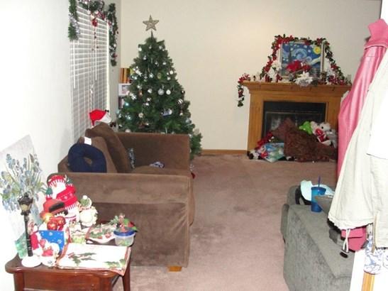 Livingroom with fireplace (photo 5)