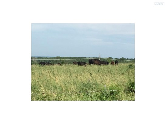 Property is perimeter fenced for livestock. (photo 4)