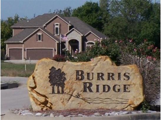2313 Burris Drive, Harrisonville, MO - USA (photo 1)