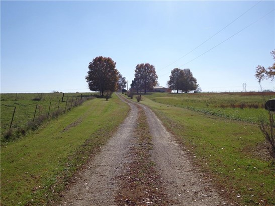 Driveway (photo 2)