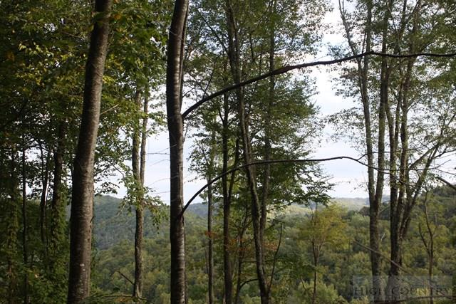 Land - Blowing Rock, NC (photo 1)