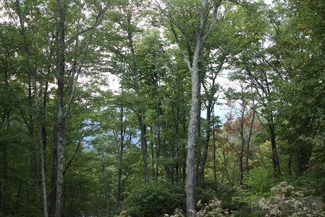 Land - Blowing Rock, NC (photo 5)