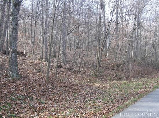 Land - Jefferson, NC (photo 1)
