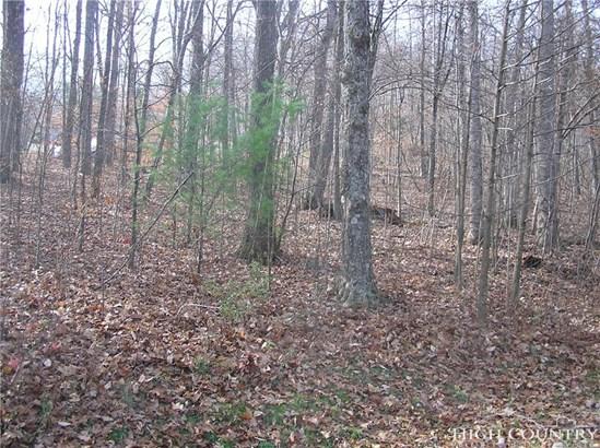 Land - Jefferson, NC (photo 2)