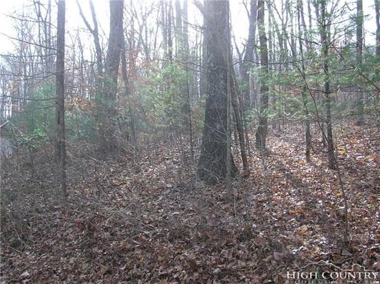 Land - Jefferson, NC (photo 3)