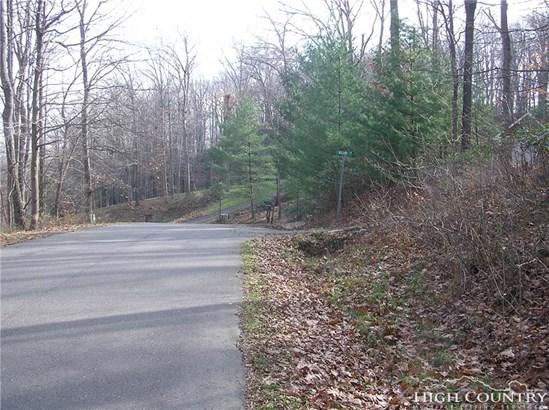 Land - Jefferson, NC (photo 5)