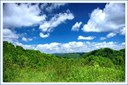 Land - Vilas, NC (photo 1)