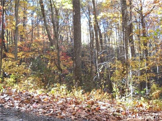 Land - Fleetwood, NC (photo 4)