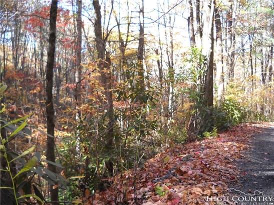 Land - Fleetwood, NC (photo 5)