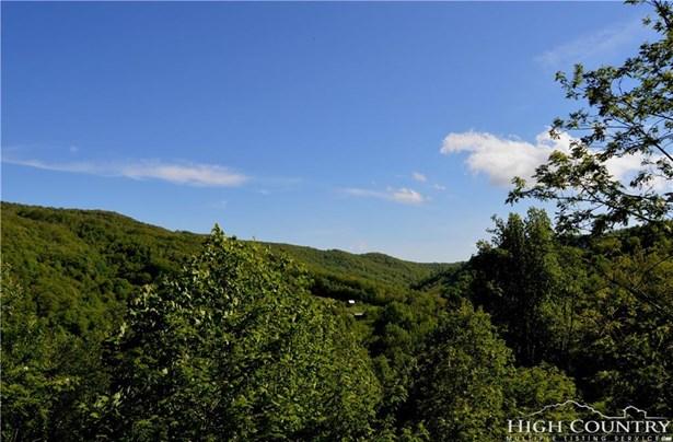Land - Blowing Rock, NC (photo 4)