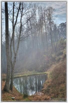 Land - Vilas, NC (photo 3)