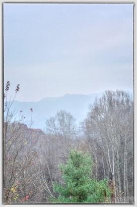 Land - Vilas, NC (photo 5)