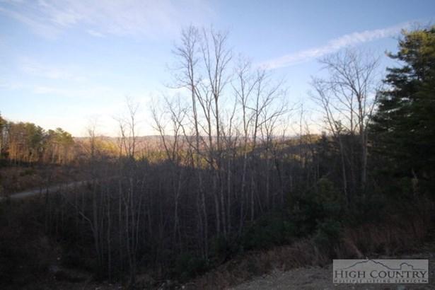 Land - Deep Gap, NC (photo 4)