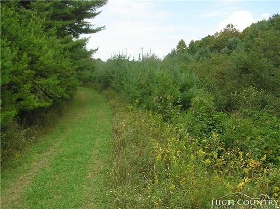 Land - Crumpler, NC (photo 3)