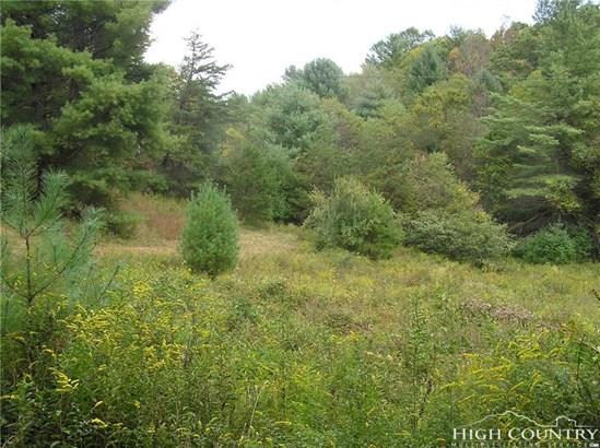 Land - Crumpler, NC (photo 5)