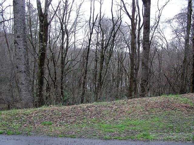 Land - Seven Devils, NC (photo 3)