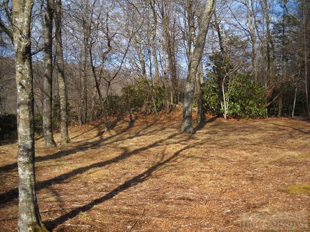 Subdivision - Sugar Mountain, NC (photo 3)