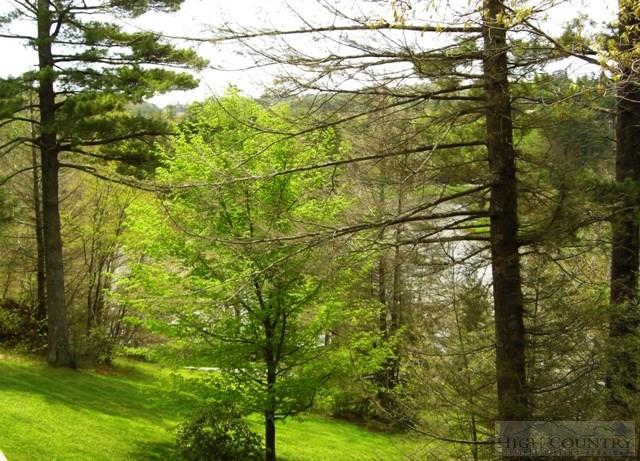 Mountain, Residential - Blowing Rock, NC (photo 2)