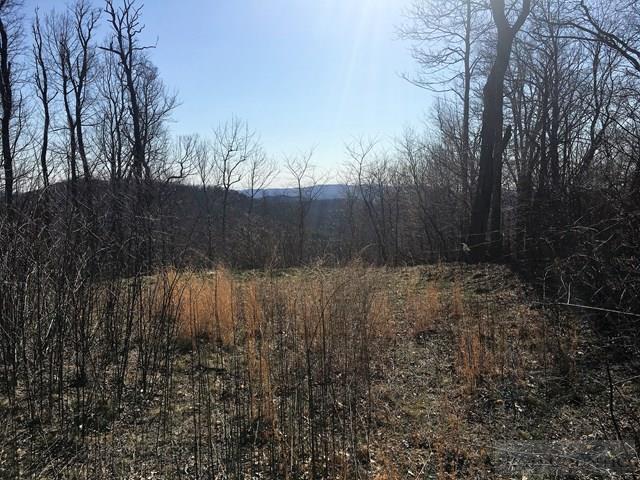 Land - Todd, NC (photo 1)