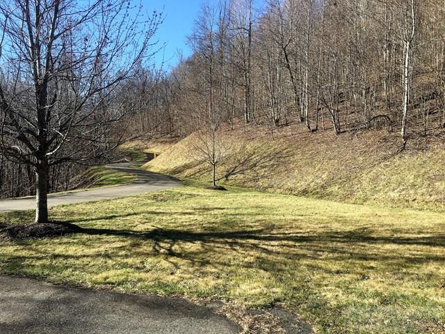 Land - Todd, NC (photo 2)