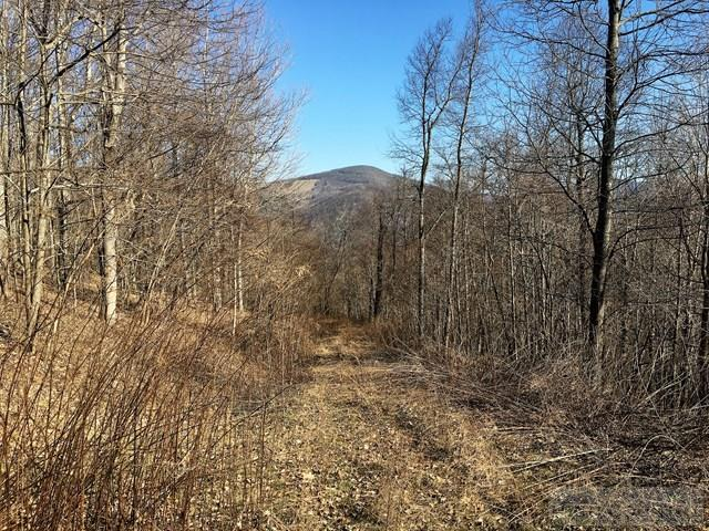 Land - Todd, NC (photo 5)