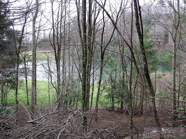 Land - Seven Devils, NC (photo 1)