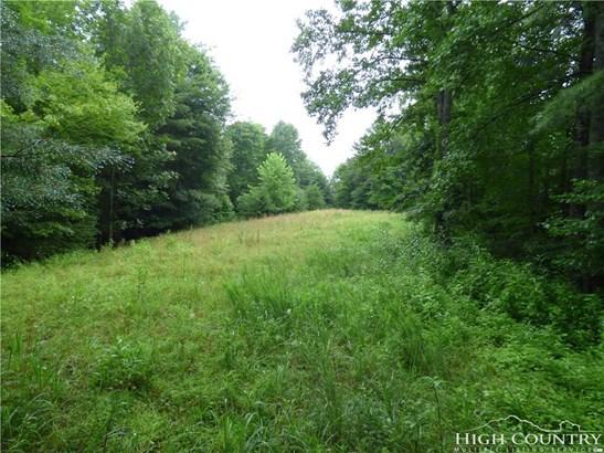 Land - Crumpler, NC