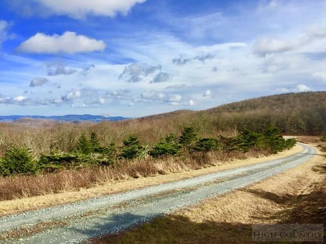 Land - Boone, NC (photo 4)