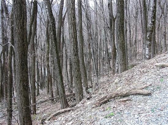 Land - Seven Devils, NC (photo 2)