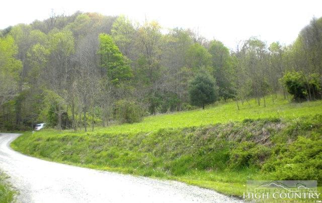 Land - Sugar Grove, NC (photo 2)