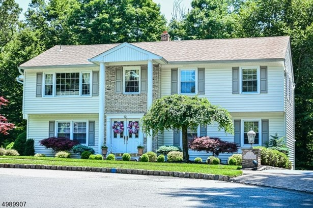 Custom Home, Single Family - Roseland Boro, NJ