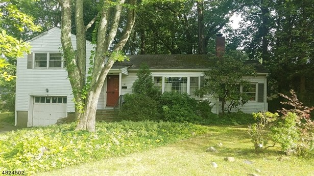 Split Level, Single Family - Florham Park Boro, NJ
