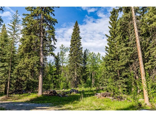 44 Wintergreen Wy, Bragg Creek, AB - CAN (photo 3)