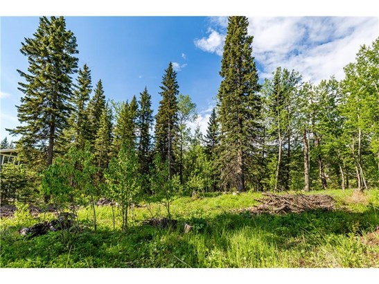 44 Wintergreen Wy, Bragg Creek, AB - CAN (photo 4)
