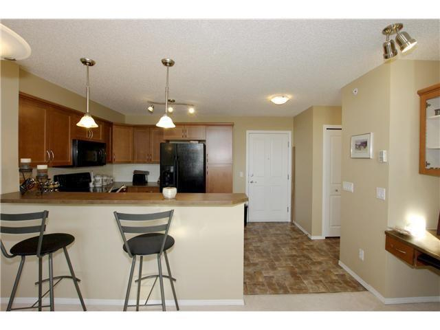 #305 380 Marina Dr, Chestermere, AB - CAN (photo 3)