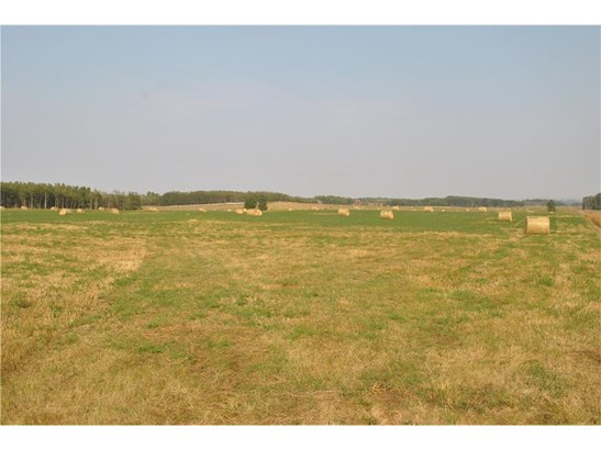 240 St, Rural Foothills M.d., AB - CAN (photo 5)