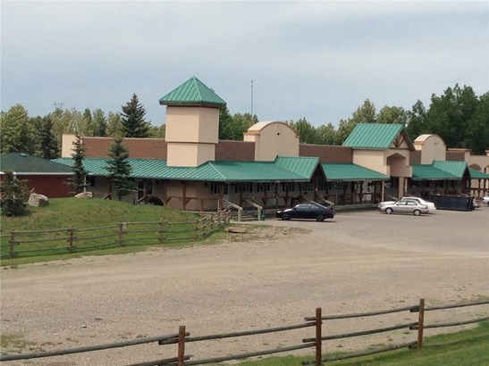 67 Paradise Ln, Rural Foothills M.d., AB - CAN (photo 3)