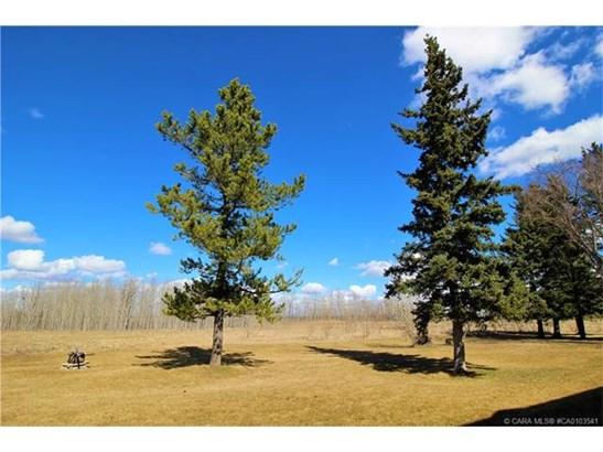 25 Poplar  Cres, Springbrook, AB - CAN (photo 4)