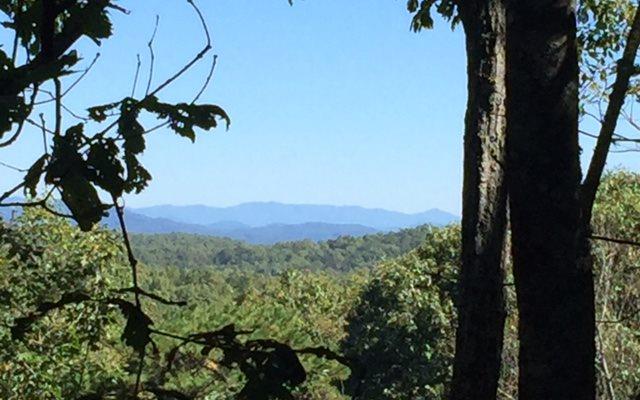 449 Bushy Head Road, Cherrylog, GA - USA (photo 1)