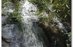 Falls Branch, Cherrylog, GA - USA (photo 2)