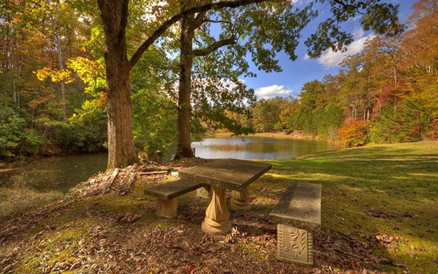 17977 Morganton Hwy, Morganton, GA - USA (photo 3)