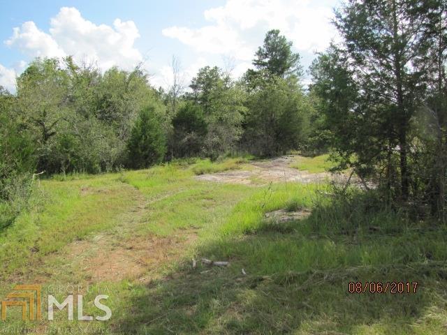 2855 Sullivan Mill Rd, Senoia, GA - USA (photo 2)
