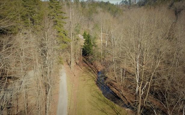 Lot30 Briar Creek, Ellijay, GA - USA (photo 4)