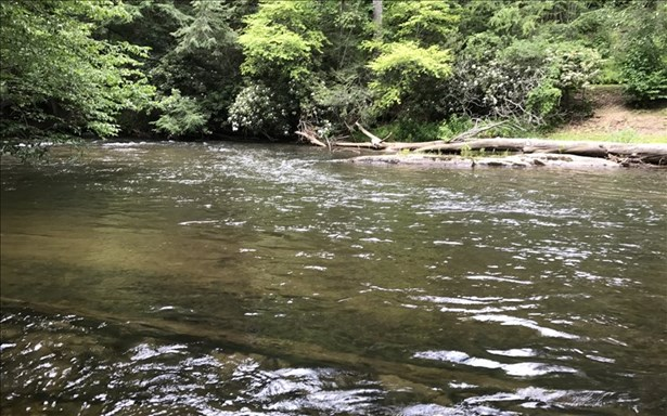 Lot13 The Riverlands, Suches, GA - USA (photo 3)