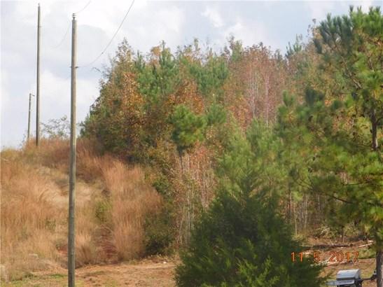 309 Samuel Atwater Road, Thomaston, GA - USA (photo 2)