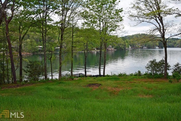 147 Chiggerchaw Ridge, Clarkesville, GA - USA (photo 4)