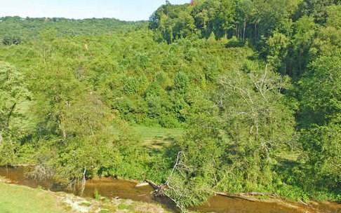 1 Shade Tree Lane, Mineral Bluff, GA - USA (photo 3)