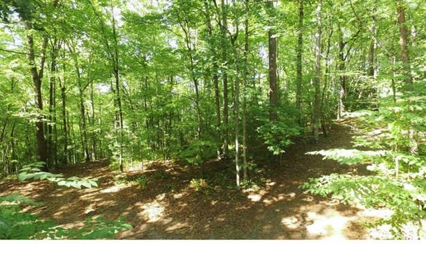 1 Shade Tree Lane, Mineral Bluff, GA - USA (photo 4)