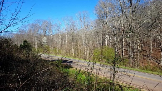 946 Pocket Road, Braselton, GA - USA (photo 5)