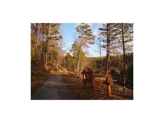 119 Yanegwa Path, Jasper, GA - USA (photo 3)